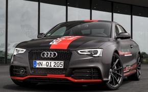 Picture Concept, Audi, TDI, 2014, RS 5
