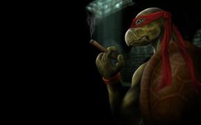 Picture the dark background, cigar, TMNT, Teenage Mutant Ninja Turtles, teenage mutant ninja turtles