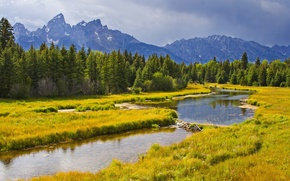 Picture forest, the sky, grass, clouds, mountains, river