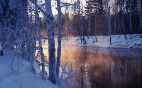 Wallpaper winter, snow, trees, lake, chill