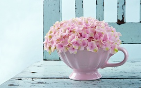 Picture flowers, background, pink, widescreen, Wallpaper, wallpaper, flowers, widescreen, flowers, background, full screen, HD wallpapers, vase, …