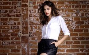 Picture girl, wall, model, shorts, white, Irina Shayk, shirt, brown hair, black, Sheik, Irina Shayk, Irina …