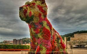 Picture flowers, the city, dog, puppy, sculpture