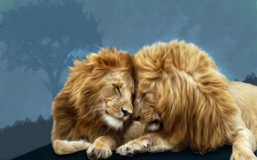 Picture lions, brotherly love, Photoshop