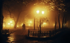 Picture Park, widescreen, guy, HD wallpapers, Wallpaper, the city, leaves, kiss, the evening, trees, night, male, ...