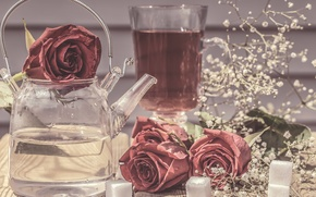 Picture flowers, style, roses, kettle, sugar, still life, gypsophila