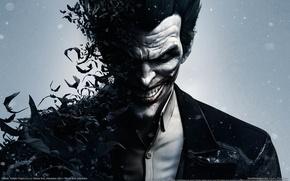 Picture smile, teeth, Joker, villain, shirt, bats, GameWallpapers, Joker, Batman: Arkham Origins, Warner Bros. Interactive Entertainment, …