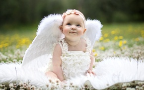 Picture wings, angel, girl, baby, wreath, funny