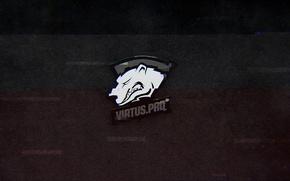 Picture gamer, team, cs:go, virtus.pro, pro, pro team, pro gamer