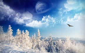 Wallpaper the sky, snow, winter, trees, planet, eagle