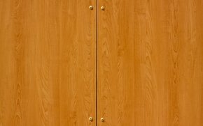 Wallpaper pattern, polished, closet doors