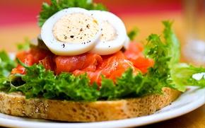 Picture eggs, bread, tomatoes, Sandwich