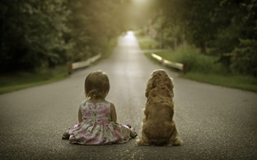 Picture road, dog, girl