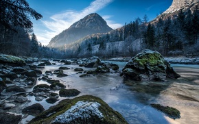 Picture snow, trees, mountains, river, stones