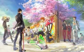 Picture joy, anime, Sakura, art, guys, Haikyuu!!, tobio kageyama, volleyball!!, azumane asahi, kenma is my trump …