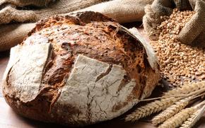 Wallpaper bread, grain, spikelets