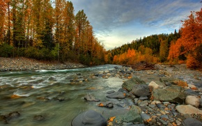 Picture autumn, forest, river, stones, stream, Alaska