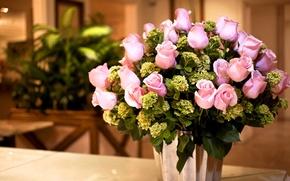 Picture light, roses, bouquet, pink, bouquet, roses