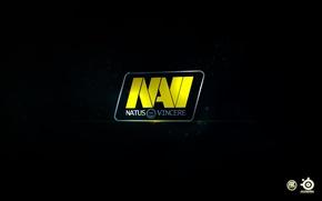 Picture navi, natus vincere, NA'VI, NAVI