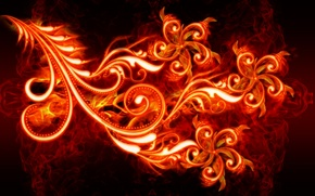 Picture flower, fire, flame, petal