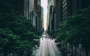 Picture the city, street, USA, New York