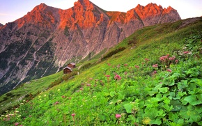 Picture the sky, clouds, sunset, flowers, mountains, Austria, house, The brandnertal