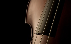 Picture music, shadow, strings, tool