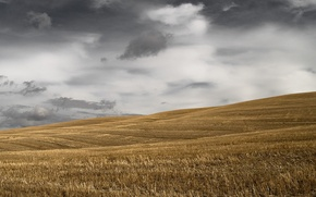 Picture field, clouds, hills