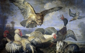 Picture animals, picture, chickens, rabbit, duck, birds, Attack Of The Kite, David Koninck