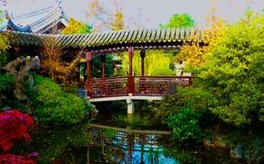 Wallpaper bridge, garden, Chinese Garden, the bushes, Oregon, greens, pond, Portland, USA