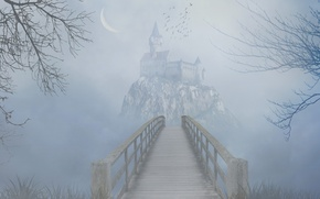 Picture grass, trees, birds, bridge, fog, rock, castle, the darkness, Crescent