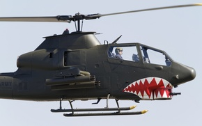 Picture helicopter, Cobra, Bell, TAH-1P