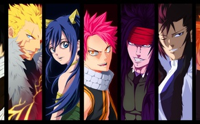Wallpaper Natsu Dragneel, Gajeel Redfox, powerful, dragon slayer, oriental, asiatic, asian, man, Laxus Dreyar, subarashii, bishojo, ...