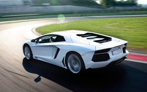 Picture white, lawn, supercar, lamborghini, Blik, racing track, aventador, lp700-4, Lamborghini, aventador