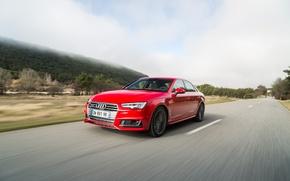 Picture Audi, Audi, quattro