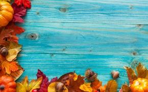 Picture autumn, leaves, berries, tree, harvest, pumpkin, acorns
