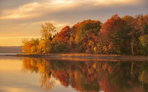 Picture autumn, forest, lake, reflection