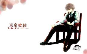 Picture anime, white hair, anime, red eye, Tokyo Ghoul, Ken Kanek, Tokyo Ghoul, The Kaneko Ken