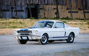 Picture Shelby, Prototype, Mustang, Ford, GT350, Shelby, 1965, Mustang, Ford