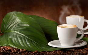 Picture leaves, coffee beans, flavored coffee