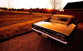 Picture sunset, Dodge, Charger, 1968, R/T