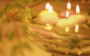 Wallpaper heat, water, candles, light, plant, romance