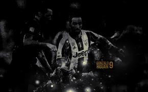 Picture wallpaper, sport, football, player, Gonzalo Higuain, Juventus FC