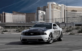 Wallpaper mustang, Mustang, cars, ford, Ford, cars, auto wallpapers, car Wallpaper, auto photo