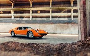 Picture Miura S, Lamborghini, sawdust, plant, orange, chips