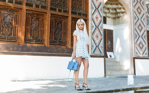 Picture summer, face, background, hair, dress, beauty, handbag, legs