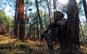 Picture forest, weapons, soldiers