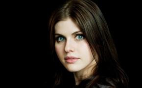 Picture girl, model, actress, brunette, black background, blue-eyed, Alexandra Daddario, Alexandra Daddario