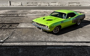 Picture 1971, Green, Barracuda, Plymouth
