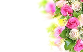 Wallpaper flower, flowers, roses, bouquet, pink, white, beautiful